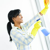 Spring Cleaning Services